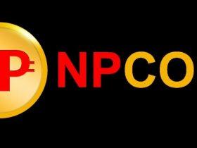 NPC coin nedir